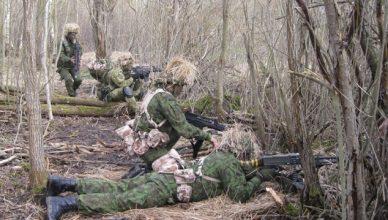 kariai mokymai