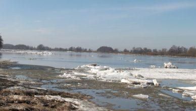 potvynis ledas