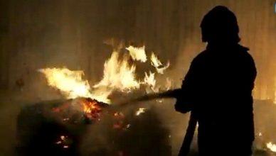 gaisras_lavonas