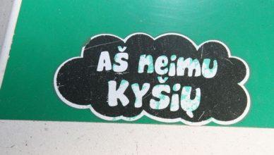 kysio_neima_2013