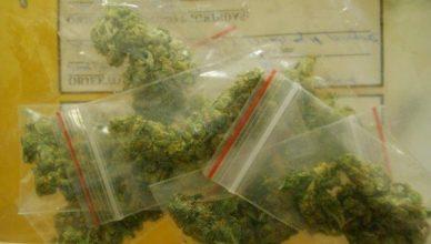 narkotikai2_taboras_vilniaus