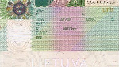 viza_dokumentas