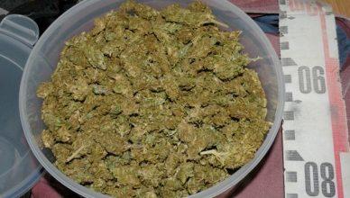 narkotikai1